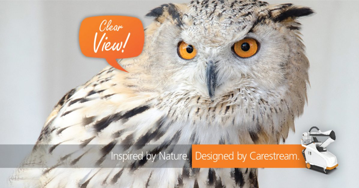 "Image of Owl with texts - ""Clear View! Insired by Nature. Designed my Carestream"" and image of DRX Nano product."