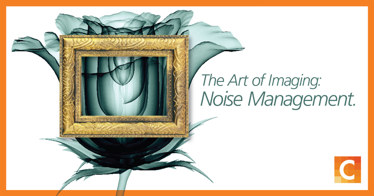 "Image of a picture frame overlapping a black and white rose with the text ""The art of Imaging: Noise Management"""